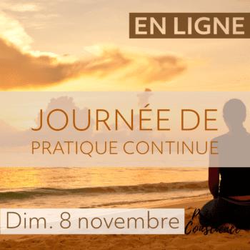 En ligne – Journée de pratique continue, Novembre 2020